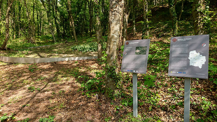Arboretum 2019 II < Craonne < Aisne < Picardie