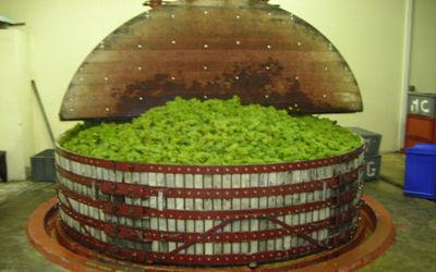 Champagne Couvent Fils_pressoir < Trelou-sur-Marne < Aisne < Picardie