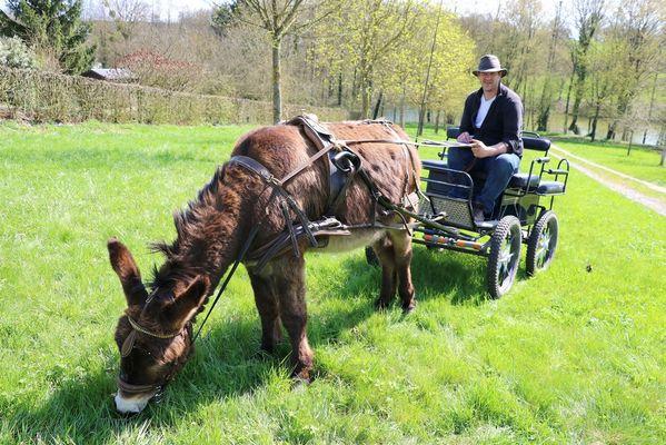 Au pré de l'âne < Fontaine-les-Vervins < Thiérache < Aisne < Hauts-de-France
