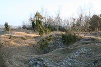 Pelouses calcicoles < Chermizy < Aisne < Picardie