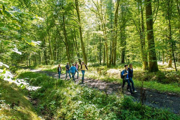 Randonnées en Forêt de Retz < Aisne