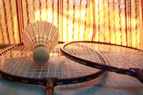 badminton-166415_1280 bis
