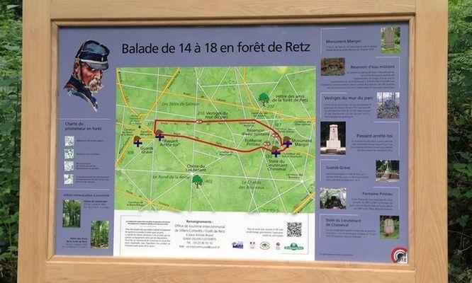 balade de 14 à 18 en forêt de Retz © OT Villers-Cotterêts(4)