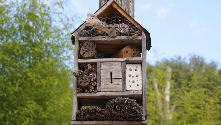 creez-votre-hotel-a-insectes