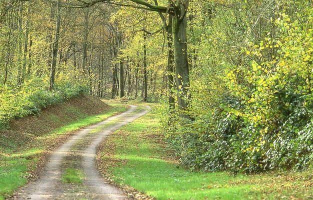 Paysage de Thiérache < Aisne