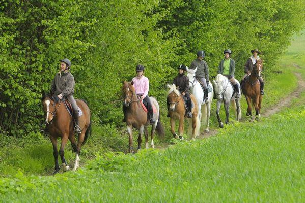 sainte-croix_centre_equestre_ecuries_du_rocher_balade_a_cheval