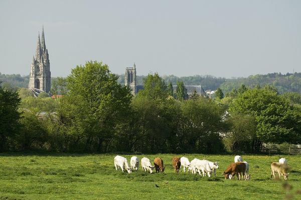 Vue sur Soissons