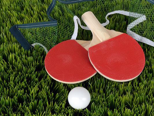 tennis de table Fayet