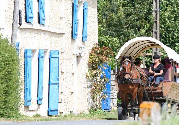 Balade en calèche à Coulon avec les Roulottes de l'Abbaye
