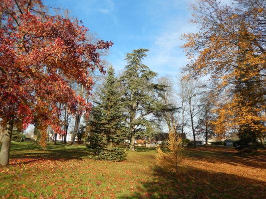 Fragnes La Loyere - Parc des Lauriers - 2016 (2)