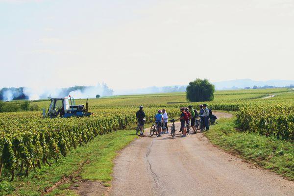 Rully-Bike and Wine-2016 (31)
