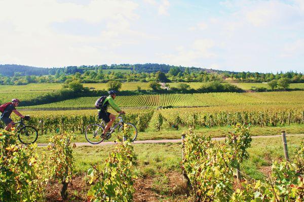 Rully-Bike and Wine-2016 (33)