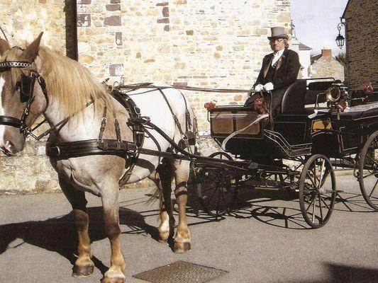 Balade en calèche Fordos mariage - Sérent Lizio - Morbihan - Bretagne