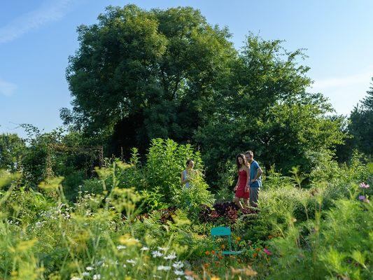 Des heures dehors - jardins comestibles - Ploërmel - Morbihan - Bretagne