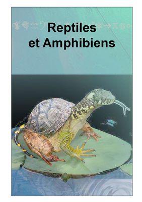 Exposition-Reptiles-et-Amphibiens-2019---Maison-de-la-Baie