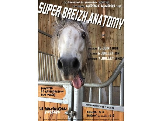 Spectacle-equestre-Porcaro-Destination-Broceliande