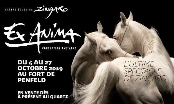 Zingaro-Quartz-4-au-27-octobre-2019--600x360-