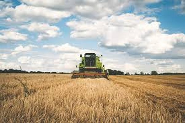 agriculture-9