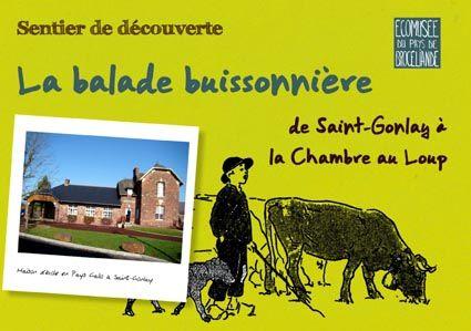 balade buissonnière Maison du patrimoine Brocéliande