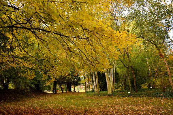 jardinsbroceliande_breal_estellegregoire