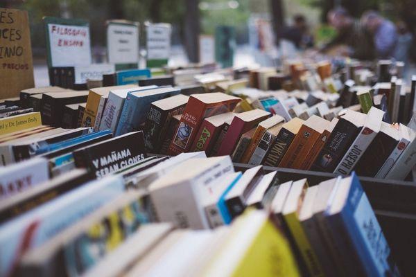 livres-bibliotheque