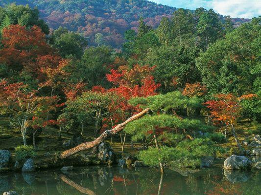 Le jardin d'eau Tenryu-Ji, Kyoto, Japon
