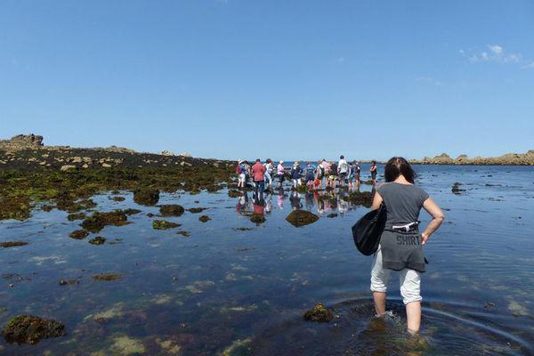 Ecomusée des goémoniers et de l'algue