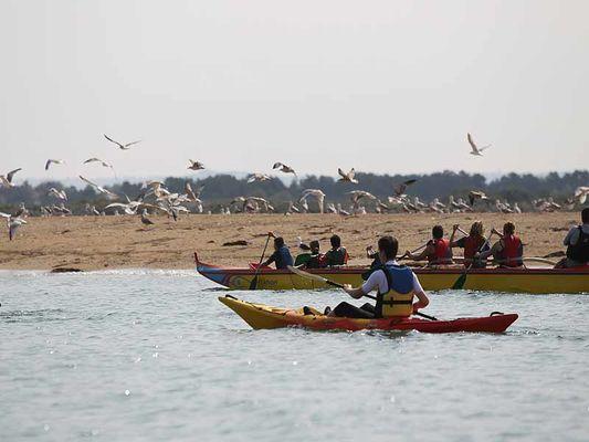 Kayak de mer et pirogue dans la baie de Sallenelles