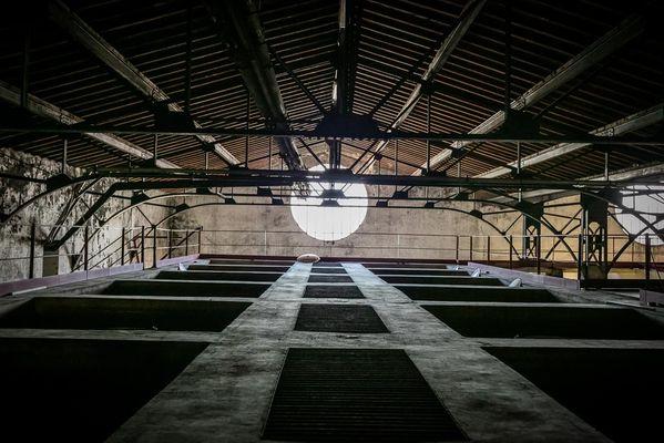 Caveau La Vendemiaire-Fleury_18