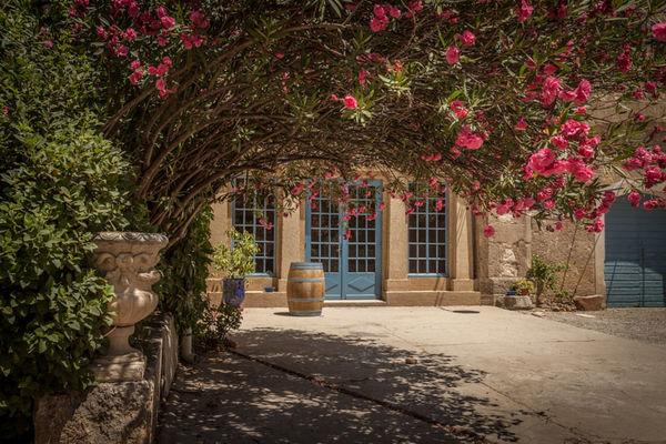 Chateau Pech Celeyran-Salles d'Aude_17