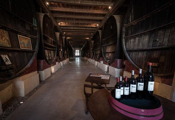 Chateau Pech Celeyran-Salles d'Aude_8