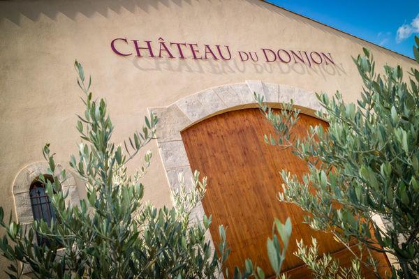 Chateau du donjon-Bagnoles_1