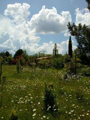 PCU-Jardins-de-Haute-Terre--12-