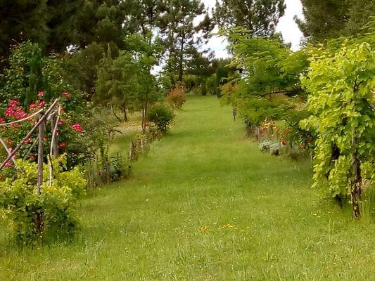 PCU-Jardins-de-Haute-Terre--3-