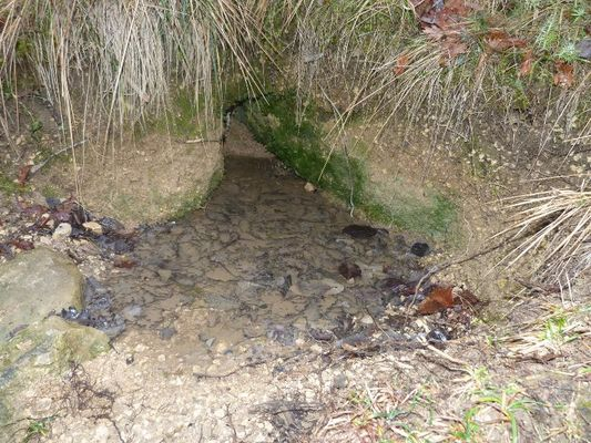 Ruisseau Sentier des Fontaines
