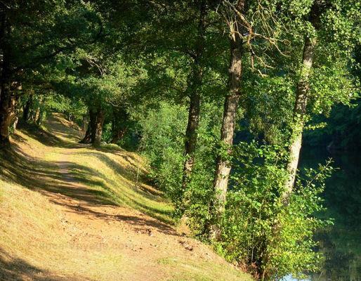 camping-au-lac-hautibus-balade-nature