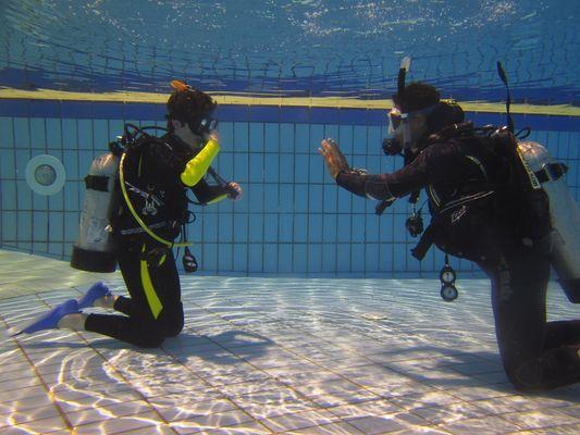 diving-2316453-1920