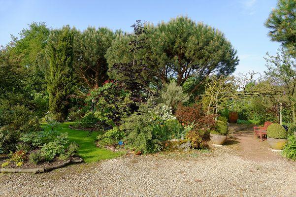 jardin-cistus-1