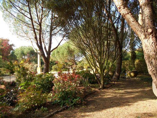 jardin-cistus-22