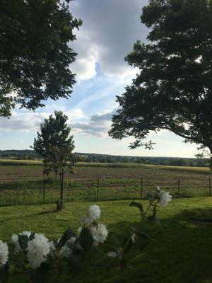 st-aubin-de-baubigne-gite-chez-juliette-paysage