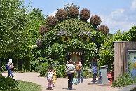 terra-botanica-ogre-2