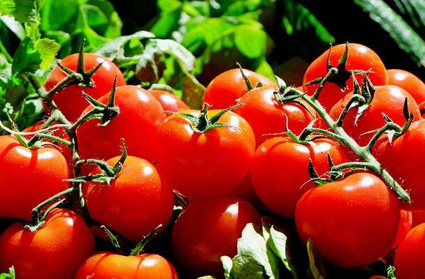 tomates-marche-2