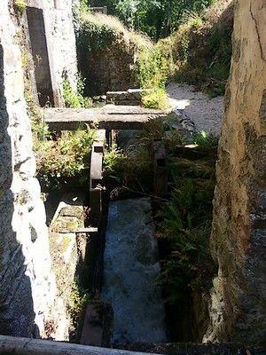 Le Moulin de l' Arche 2 - internet.jpg_6