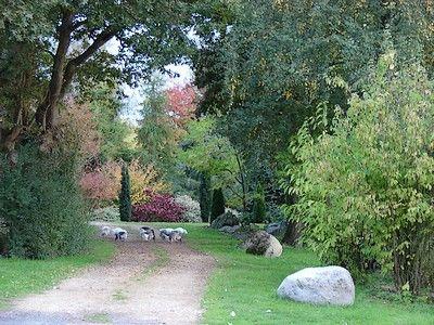 Arboretum4-sit.jpg_4