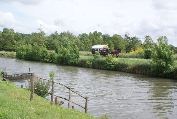 Balade en calèche le long de la rivière