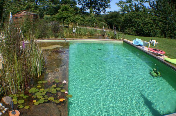 saint-paul-en-gatine-gites-au-cocorico-au-marcassin-piscine-bis.jpg_1