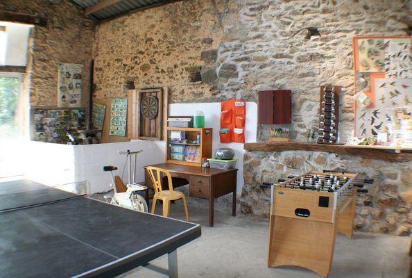 saint-paul-en-gatine-gites-au-cocorico-au-marcassin-flechettest.jpg_13