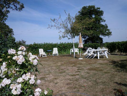 genneton-gite-les-3-roses-jardin.JPG_5