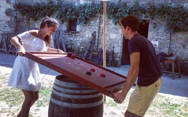 8-Chateau-de-Bridoire-Guyot
