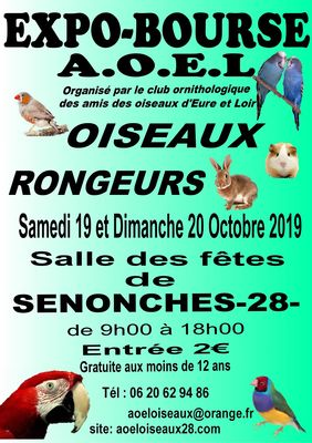 AOEsenonches-20-octobre--page-3-